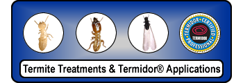 Spray Termites Treatment